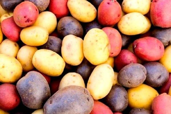 Come scegliere le patate