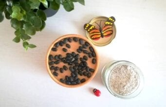 Farina di fagioli Bimby